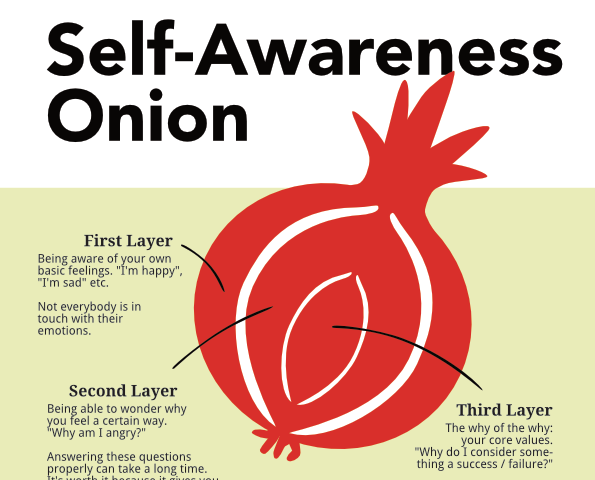 Self-Awarness Onion